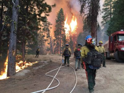 firefighters_intermountain_forest_service